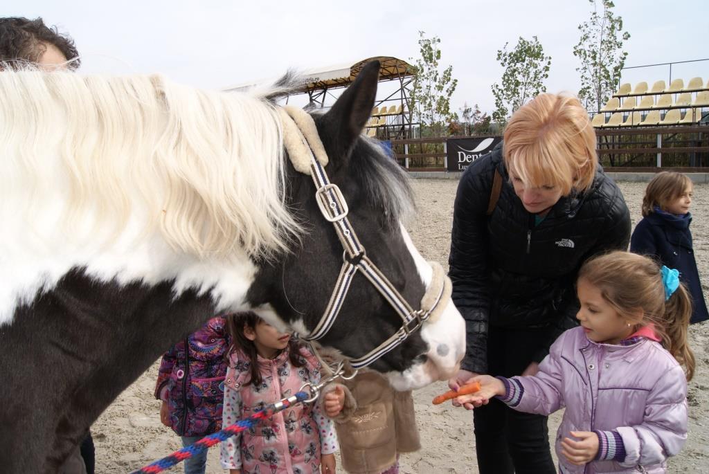 Acorns la Equestria