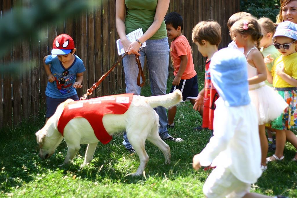 Acorns World Animal Day