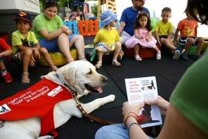 dog visit at Acorns Nursery