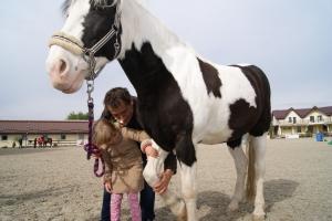copii la equestria